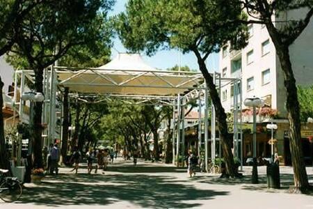 Viale Ceccarini zona Pedonale a 4 - Appartamento