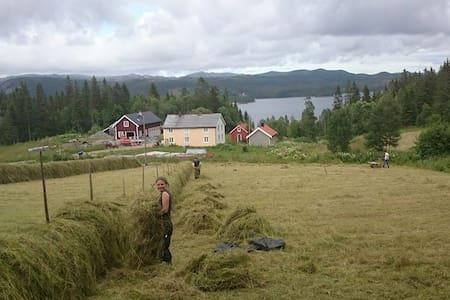 Slettvoll Gård - Gjølga - Villa