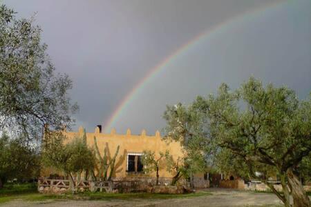Castell dels Angels, chalet en el Delta - Chalet