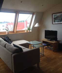 Central and charming w/parking - Oslo - Apartment