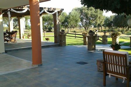 Vila Persa ένας μικρός παράδεισος - Villa