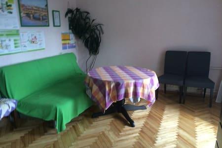 Комната с видом на Неву - Санкт-Петербург - Apartment