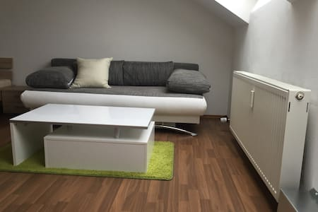 1 Zimmer Apartment plus Schlafcouch - Appartement