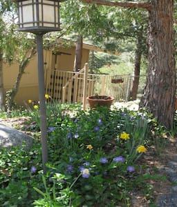 Mountain View Retreat - Idyllwild-Pine Cove - 独立屋