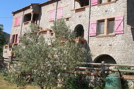 Mas Mohair du Vallespir - Apartment