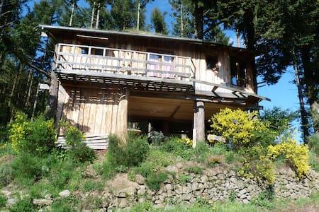La cabane - Kabin