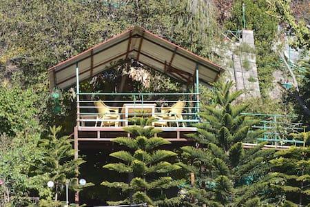 La Pinekonez Kussowlie HOMESTAY - Haus