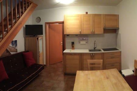 Apartma Rogla ski resort - Wohnung