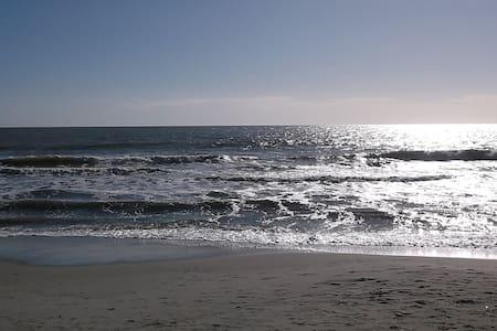 QUIET CONDO WALK TO BEACH - Myrtle Beach