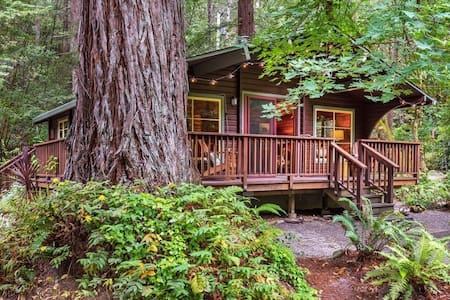Romantic creekside cedar cabin nestled in a redwood forest - ガーンビル