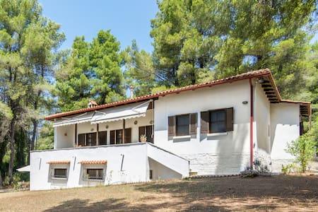 Sani 3bdrm summer villa - Villa