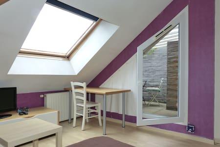 Studio  avec petite terrasse Chambéry - Apartament