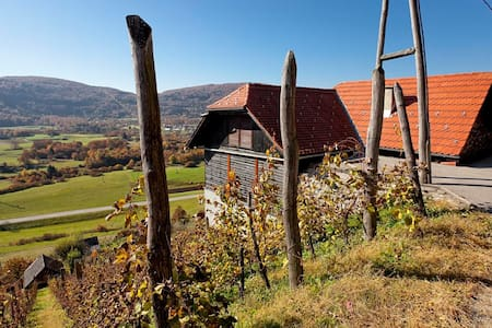 Vineyard cottage Ludvikov hram - Dvor - Rumah