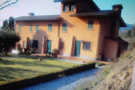 OLIVO -  Localita' Montaccolle - - Montecatini Terme - Villa