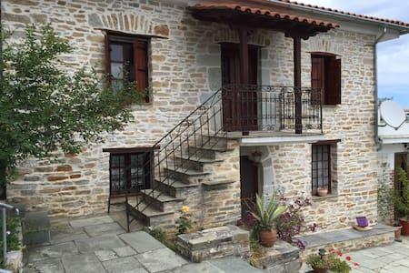 Villa Xinovrissi - Xinovrysi - Villa