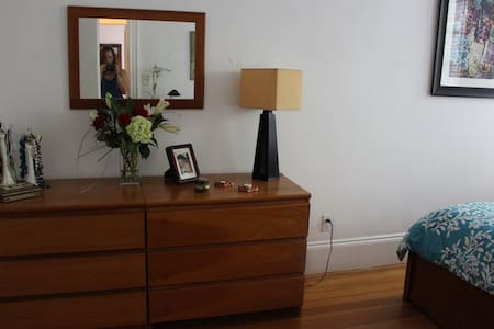 Cozy But No Clutter! Right by the T - Brookline - Condominio