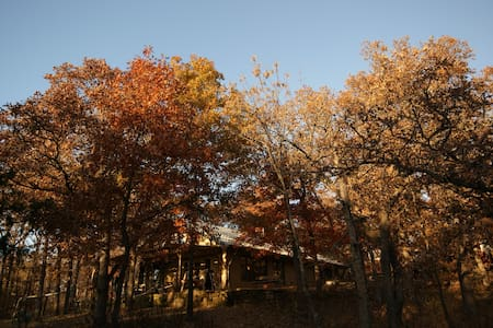 Joe's 30 acre wooded oasis - Haus