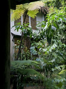 Secluded Rainforest Retreat - Jubilee Heights - Maison