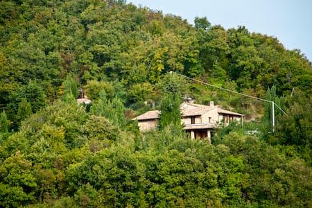 Calmancino delle Selve, Urbino - Bed & Breakfast