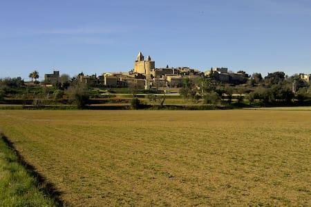 Casa cómoda con jardín en pueblo medieval. - House