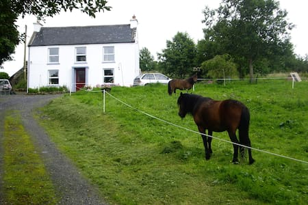Quaint Little Irish House - Roscommon - House