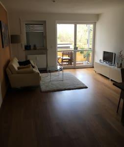 Moderne, 2-Zimmer Design Wohnung - Ingolstadt