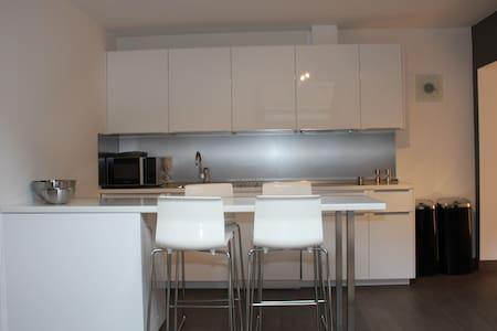 Appartement entièrement rénové mansardé - Lakás