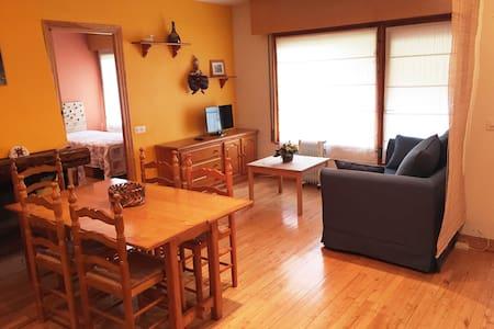 Amplio apartamento en Vielha para 4 personas. - Lleida - Pis