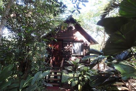 Parrot Nest Treehouse Cabana - San Ignacio