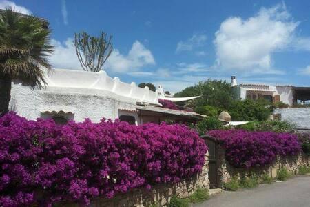 Palau - Porto Rafael - Villa - Punta Sardegna - House