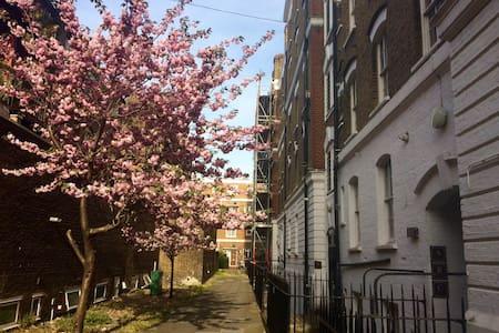 Big & beautiful apartment in central London - London - Apartment