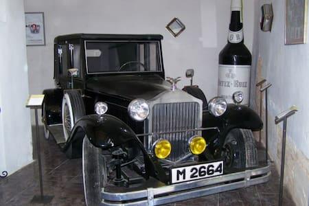 Cortijo andaluz entre viñas& olivos - House