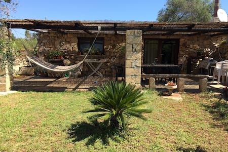 Affascinante bilocale con giardino - House