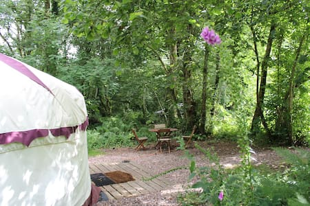 Peaceful Woodland Yurt in the Devon Countryside - Iurta