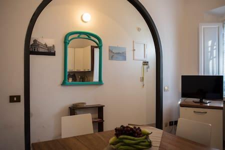 Graziosa casa indipendente - Pisa - House