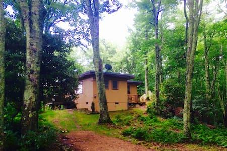 Banner Elk Cottage - House