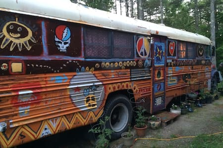 Have A Groovy Time in HIPPIE BUS - Autre