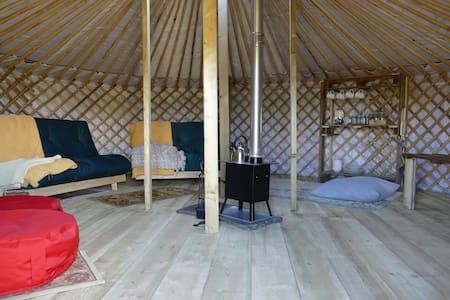 Wych elm yurts (green yurt) - Iurta