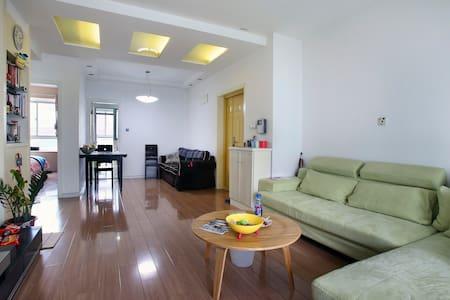 暑假实习首选学生游背包客首选世纪公园二号线浦东机场磁悬浮交通便利 - 上海 - Apartment