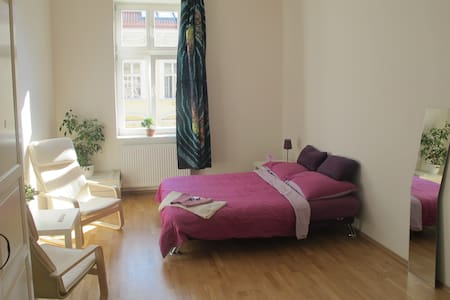 Light and lovely room in the city center - Apartment