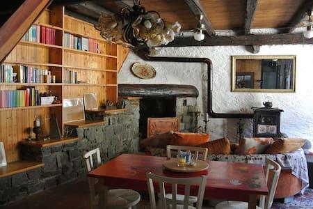 Barn/perfect ski location - Sonico