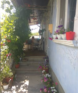 Sunny rooms in house with big garden - Abaclia