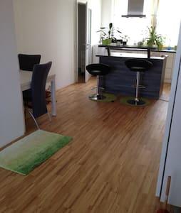 63m2 flat in vienna - Lakás