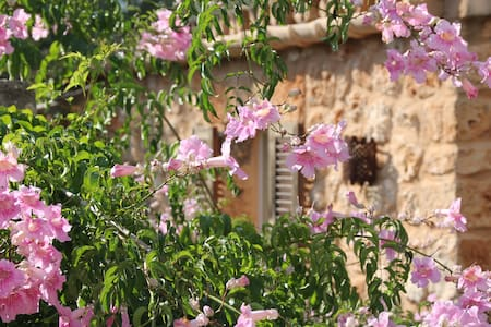 Charming studio on small farm - Algaida