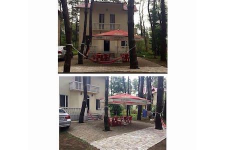 Beach House in Shekvetili - Haus