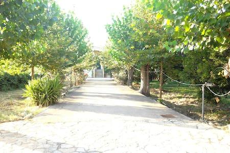 Ktima kavourou, Dionisis' house - Agia marina
