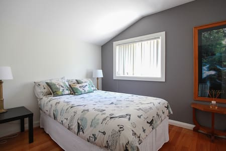 Good sized single bedroom - House