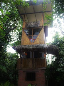 The Bird Tower, nature lovers dream - Boomhut