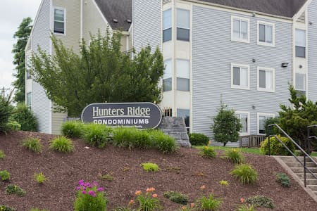 Large Apt. 2 big bedrooms. WALK TO JMU !!!! - Daire