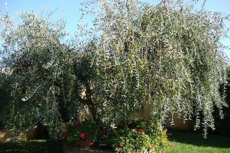 Elegante Villino con Giardino - Villa